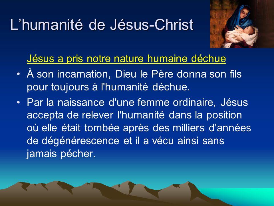Jésus a pris notre nature humaine déchue À son incarnation, Dieu le Père donna son fils pour toujours à l humanité déchue.