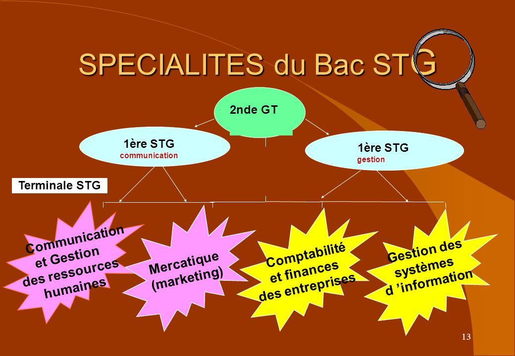 13 SPECIALITES du Bac ST G Terminale STG 1ère STG gestion 2nde GT Communication et Gestion des ressources humaines Comptabilité et finances des entrep