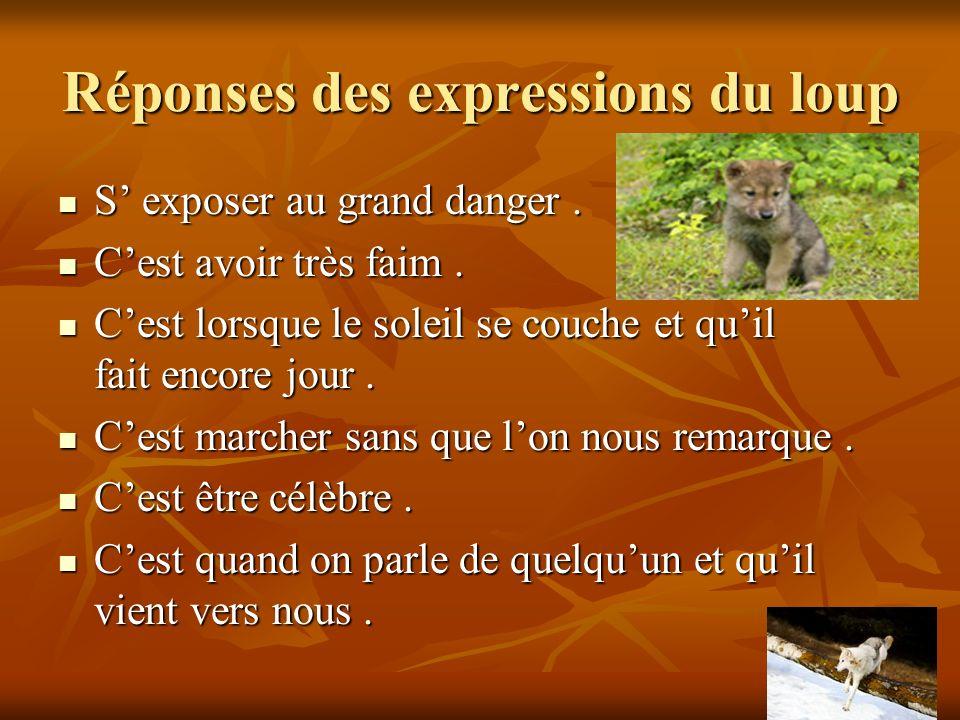 Réponses des expressions du loup S exposer au grand danger.