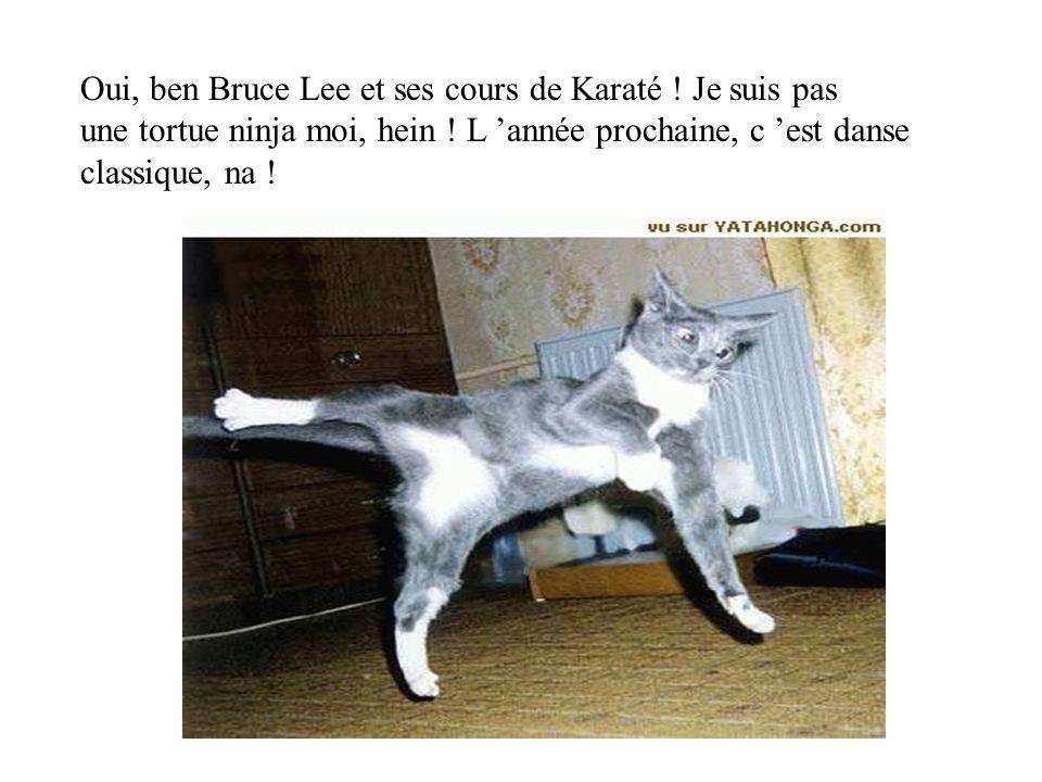 Oui, ben Bruce Lee et ses cours de Karaté ! Je suis pas une tortue ninja moi, hein ! L année prochaine, c est danse classique, na !