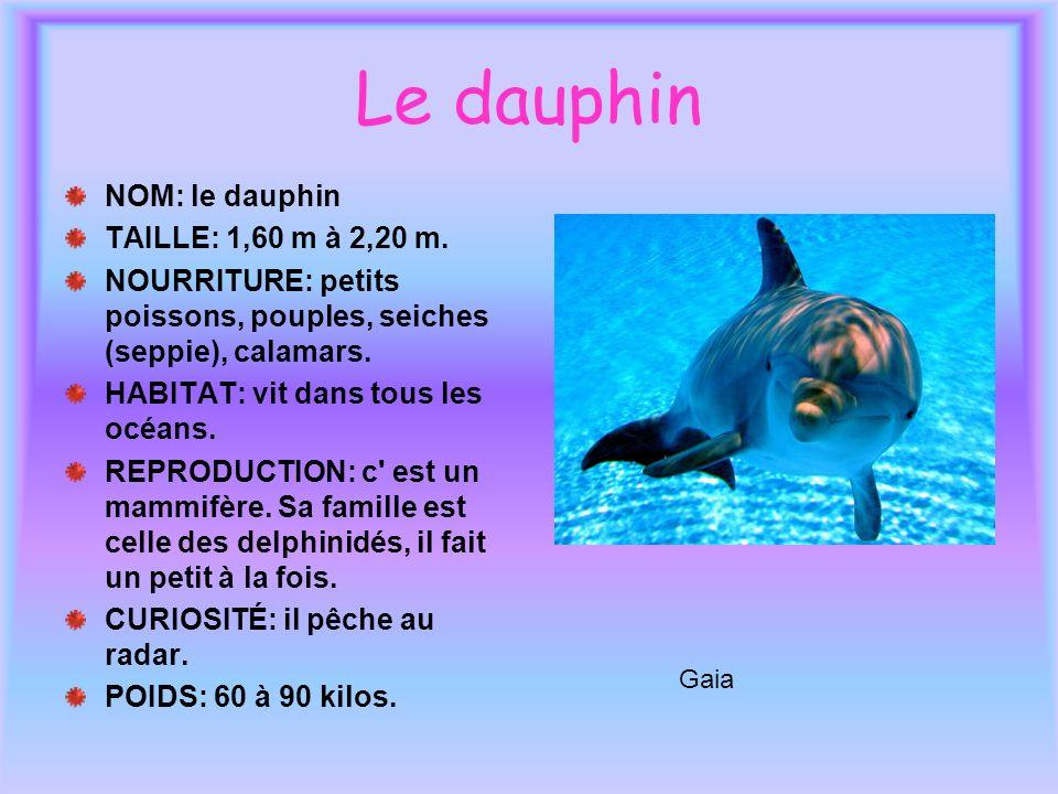 Le dauphin NOM: le dauphin TAILLE: 1,60 m à 2,20 m. NOURRITURE: petits poissons, pouples, seiches (seppie), calamars. HABITAT: vit dans tous les océan