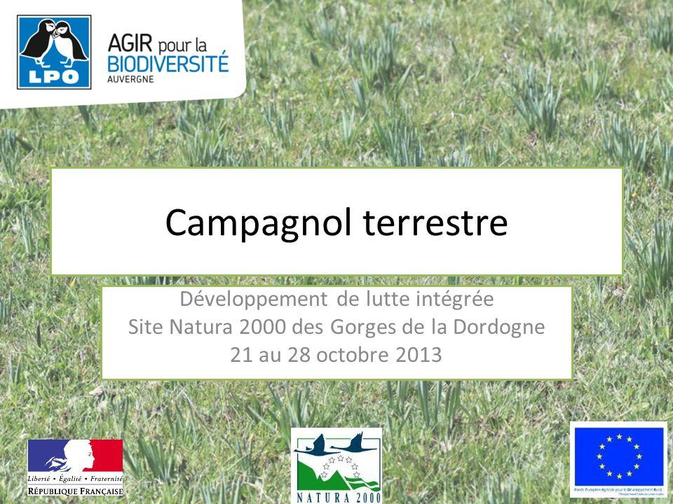 Campagnol terrestre Développement de lutte intégrée Site Natura 2000 des Gorges de la Dordogne 21 au 28 octobre 2013