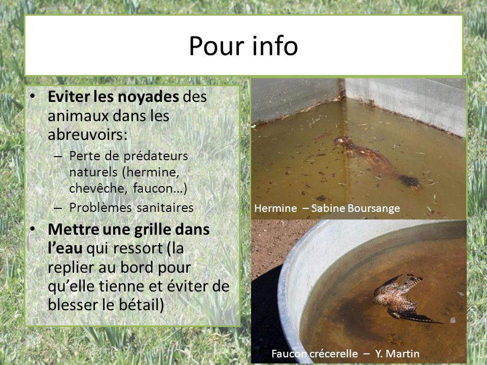 Pour info Eviter les noyades des animaux dans les abreuvoirs: – Perte de prédateurs naturels (hermine, chevêche, faucon…) – Problèmes sanitaires Mettr