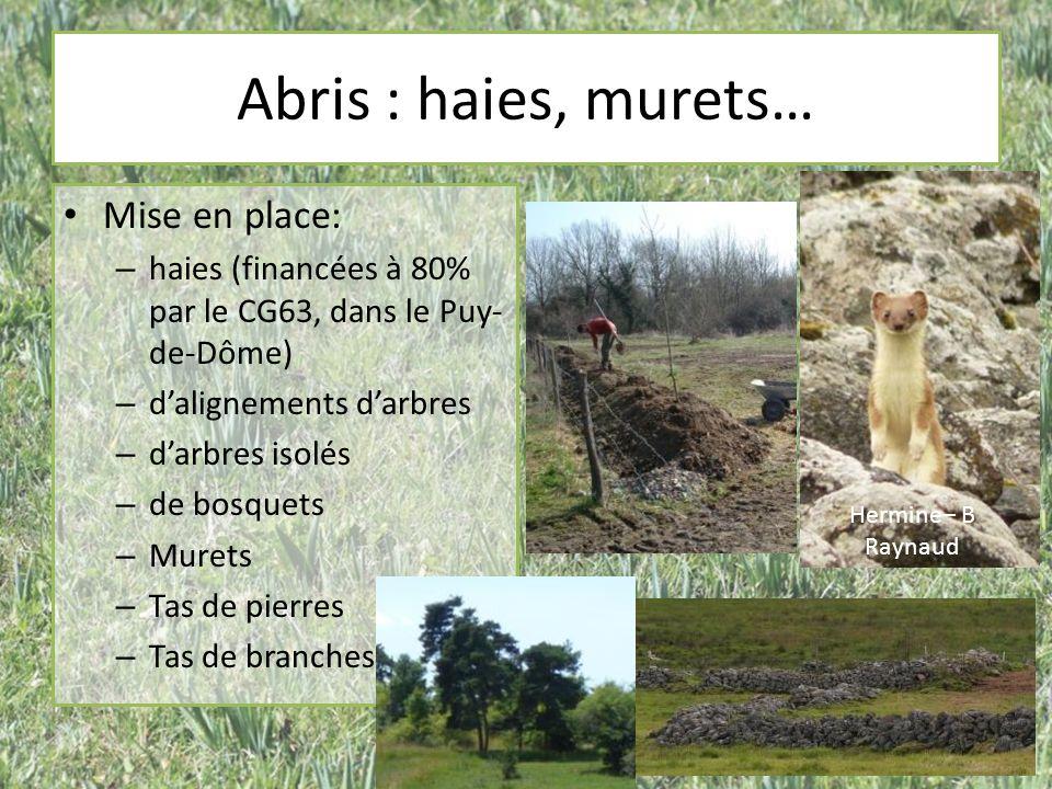 Abris : haies, murets… Mise en place: – haies (financées à 80% par le CG63, dans le Puy- de-Dôme) – dalignements darbres – darbres isolés – de bosquet