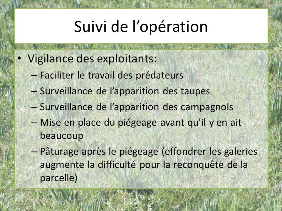 Suivi de lopération Vigilance des exploitants: – Faciliter le travail des prédateurs – Surveillance de lapparition des taupes – Surveillance de lappar
