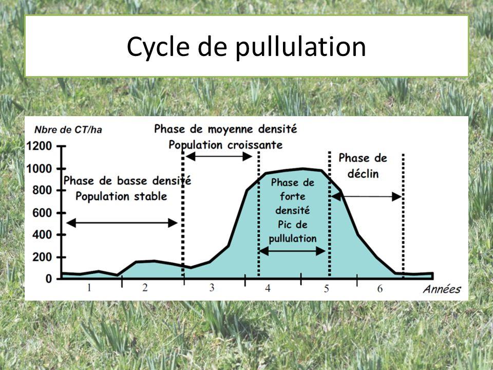 Les autres facteurs Fluctuation de la population de Campagnols terrestres Prédateurs Grandes proportions de prairies permanentes Fertilisation des prairies Climat : Hiver doux Maladies parasitisme
