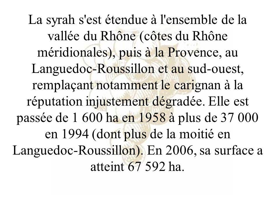 La syrah s'est étendue à l'ensemble de la vallée du Rhône (côtes du Rhône méridionales), puis à la Provence, au Languedoc-Roussillon et au sud-ouest,