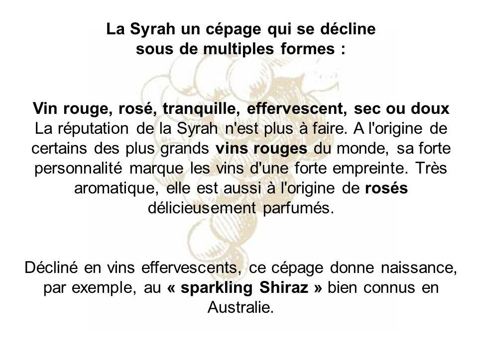La Syrah un cépage qui se décline sous de multiples formes : Vin rouge, rosé, tranquille, effervescent, sec ou doux La réputation de la Syrah n'est pl