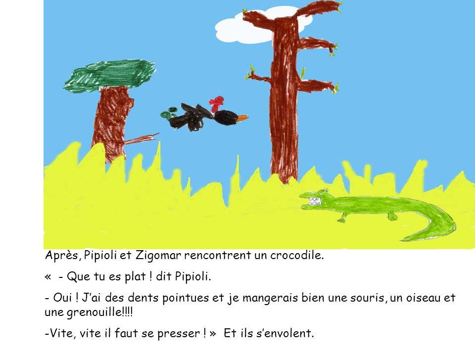Après, Pipioli et Zigomar rencontrent un crocodile. « - Que tu es plat ! dit Pipioli. - Oui ! Jai des dents pointues et je mangerais bien une souris,