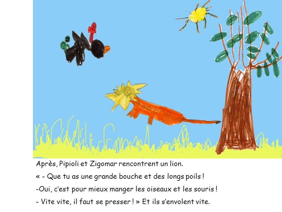 Après, Pipioli et Zigomar rencontrent un lion. « - Que tu as une grande bouche et des longs poils ! -Oui, cest pour mieux manger les oiseaux et les so