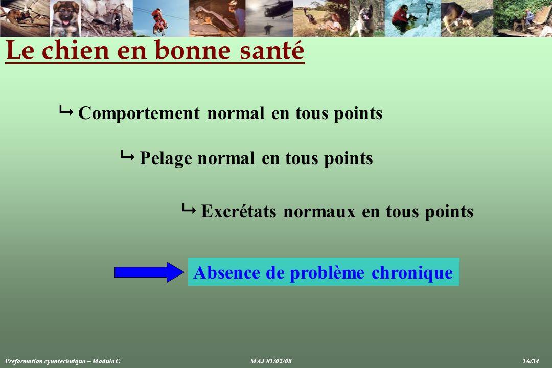 Le chien en bonne santé Comportement normal en tous points Pelage normal en tous points Excrétats normaux en tous points Absence de problème chronique