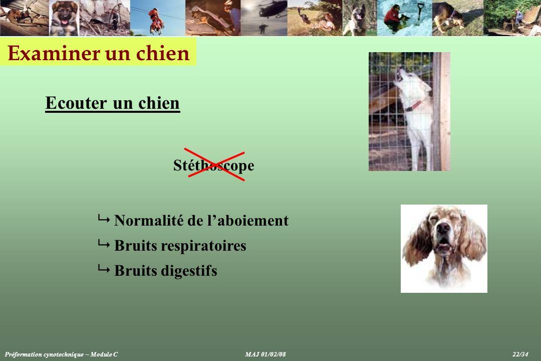 Examiner un chien Ecouter un chien Normalité de laboiement Bruits respiratoires Bruits digestifs Stéthoscope Préformation cynotechnique – Module CMAJ