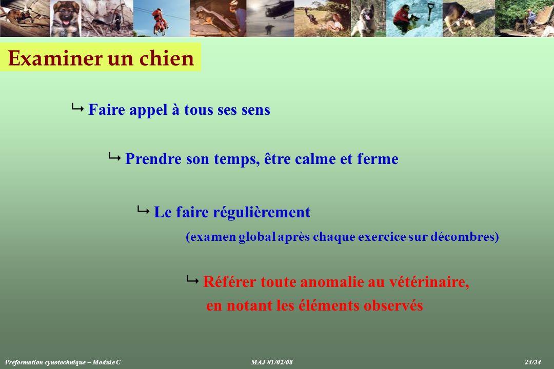 Examiner un chien Faire appel à tous ses sens Prendre son temps, être calme et ferme Le faire régulièrement (examen global après chaque exercice sur d