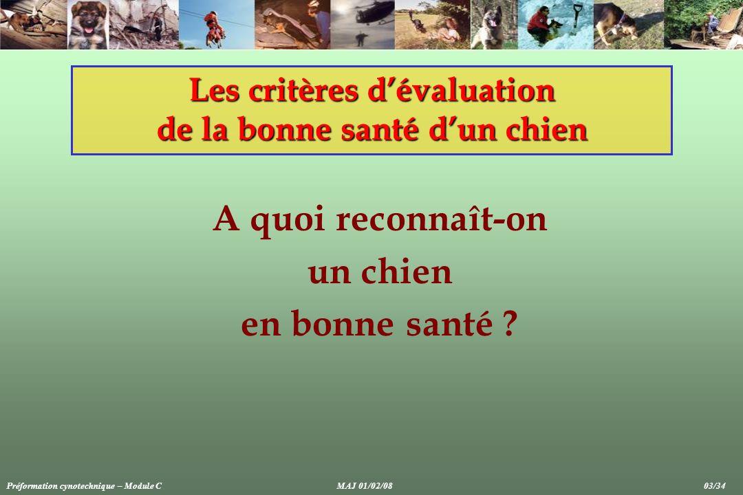 A quoi reconnaît-on un chien en bonne santé ? Les critères dévaluation de la bonne santé dun chien Préformation cynotechnique – Module CMAJ 01/02/08 0