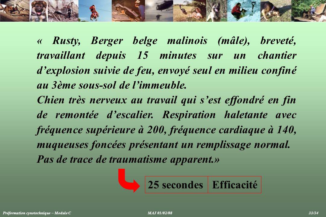 « Rusty, Berger belge malinois (mâle), breveté, travaillant depuis 15 minutes sur un chantier dexplosion suivie de feu, envoyé seul en milieu confiné