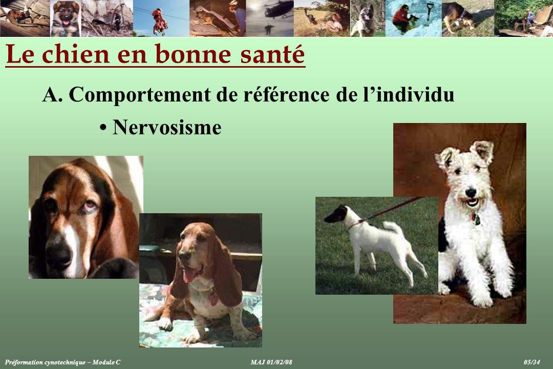 Le chien en bonne santé A. Comportement de référence de lindividu Nervosisme Préformation cynotechnique – Module CMAJ 01/02/08 05/34