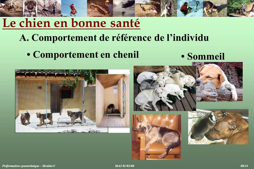 Le chien en bonne santé A. Comportement de référence de lindividu Comportement en chenil Sommeil Préformation cynotechnique – Module CMAJ 01/02/08 08/