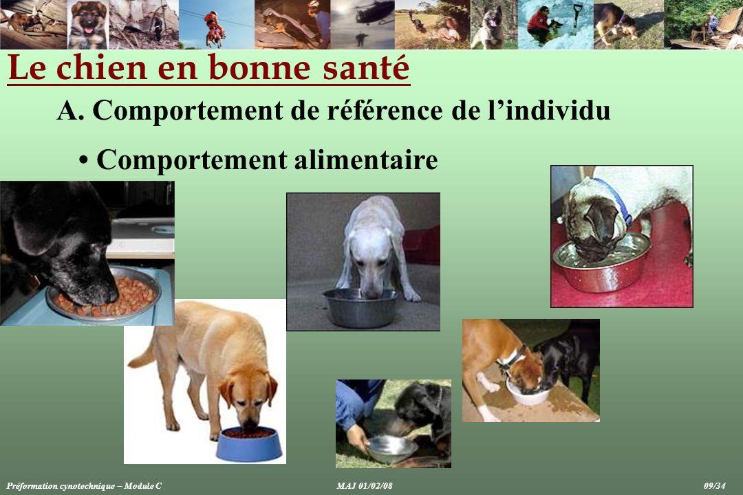 Le chien en bonne santé A. Comportement de référence de lindividu Comportement alimentaire Préformation cynotechnique – Module CMAJ 01/02/08 09/34