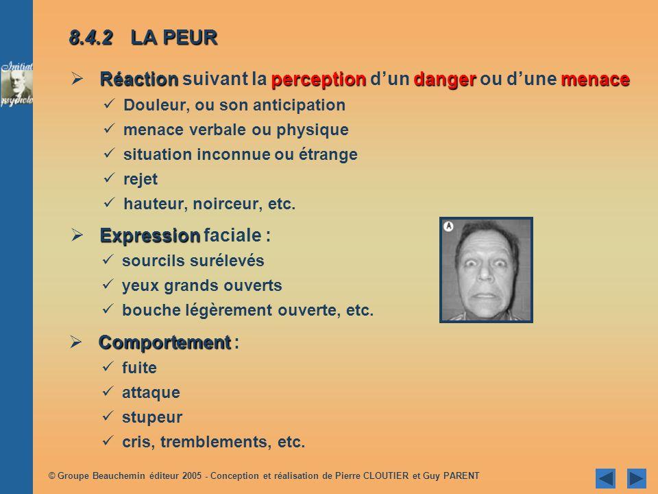 © Groupe Beauchemin éditeur 2005 - Conception et réalisation de Pierre CLOUTIER et Guy PARENT 8.4REGARD SUR QUELQUES ÉMOTIONS TIRÉES DU QUOTIDIEN 8.4.