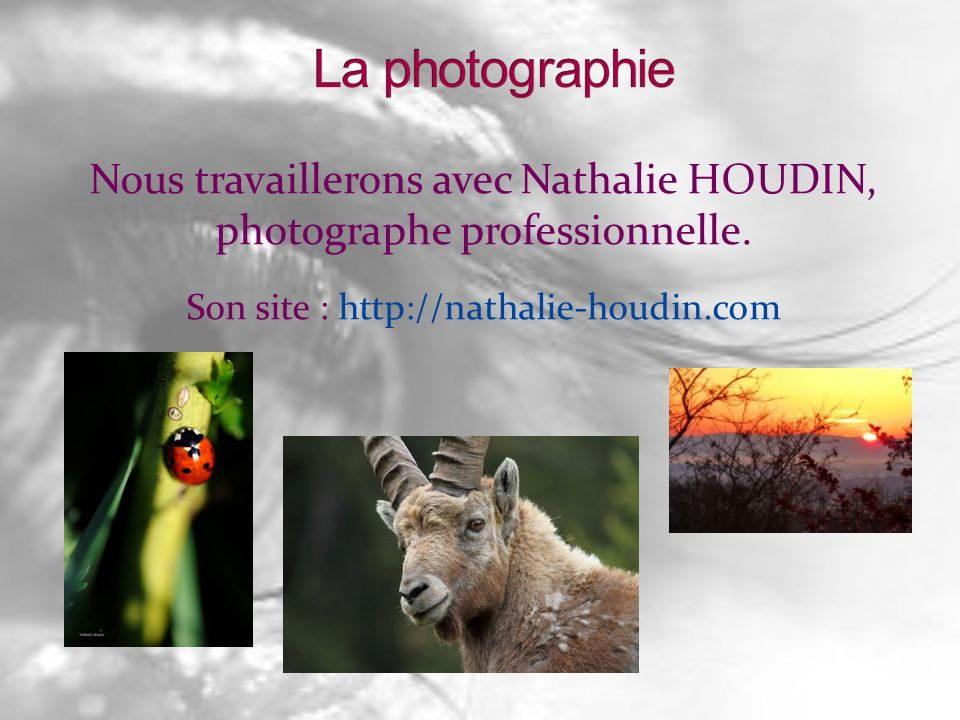Nous travaillerons avec Nathalie HOUDIN, photographe professionnelle. Son site : http://nathalie-houdin.com