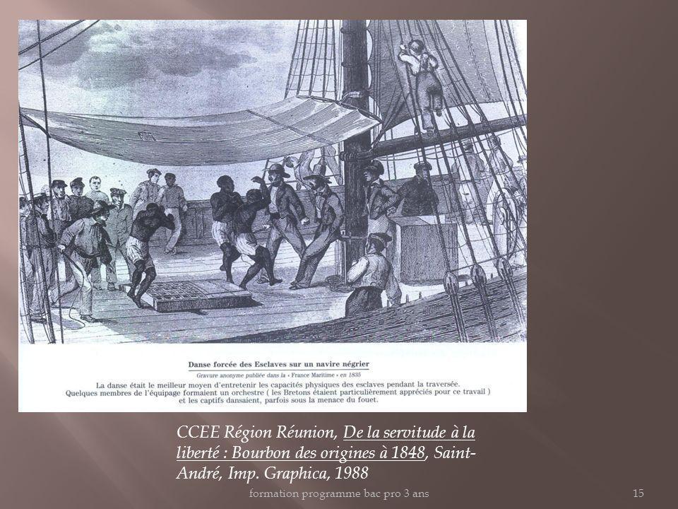 CCEE Région Réunion, De la servitude à la liberté : Bourbon des origines à 1848, Saint- André, Imp. Graphica, 1988 formation programme bac pro 3 ans15