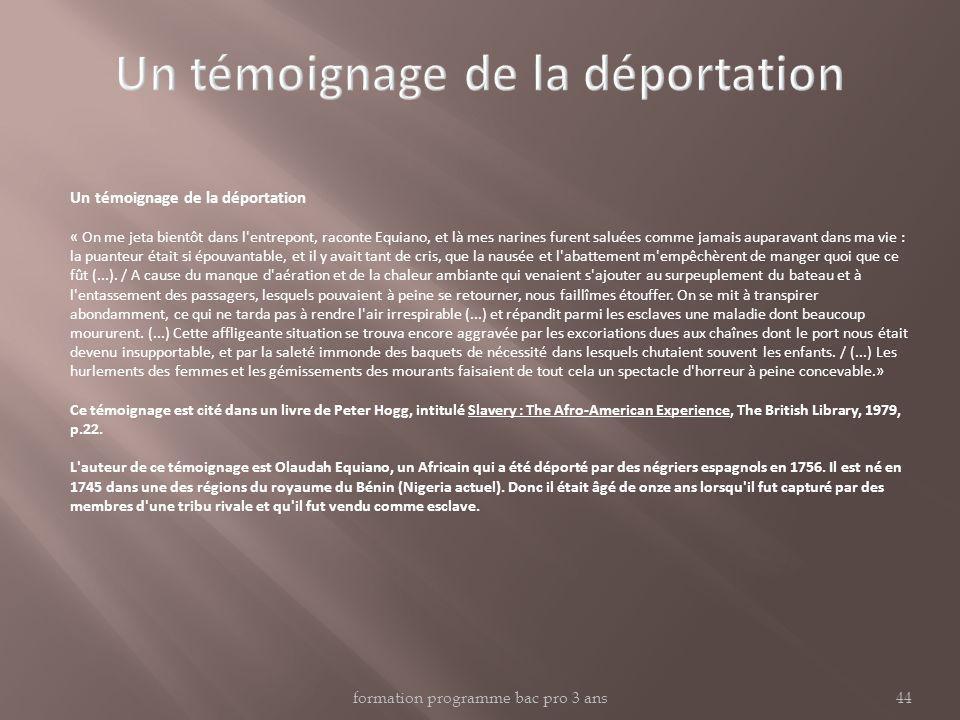formation programme bac pro 3 ans44 Un témoignage de la déportation « On me jeta bientôt dans l'entrepont, raconte Equiano, et là mes narines furent s