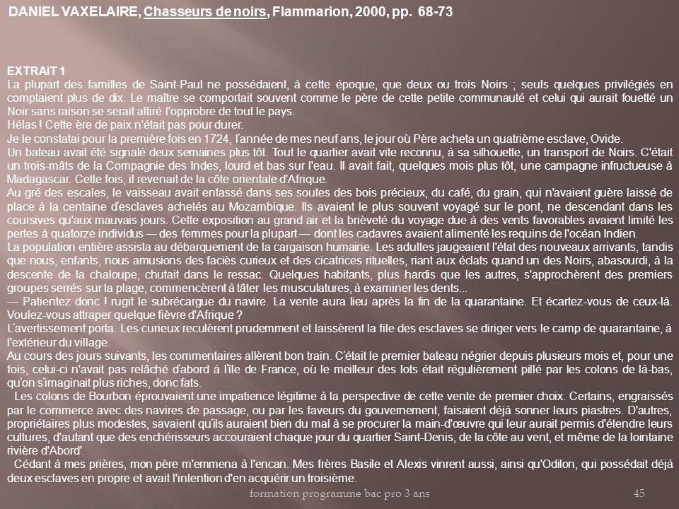 DANIEL VAXELAIRE, Chasseurs de noirs, Flammarion, 2000, pp. 68-73 EXTRAIT 1 La plupart des familles de Saint-Paul ne possédaient, à cette époque, que