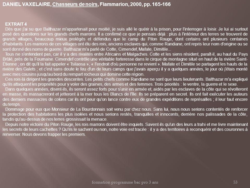 DANIEL VAXELAIRE, Chasseurs de noirs, Flammarion, 2000, pp. 165-166 EXTRAIT 4 Dès que j'ai su que Balthazar m'appartenait pour moitié, je suis allé le