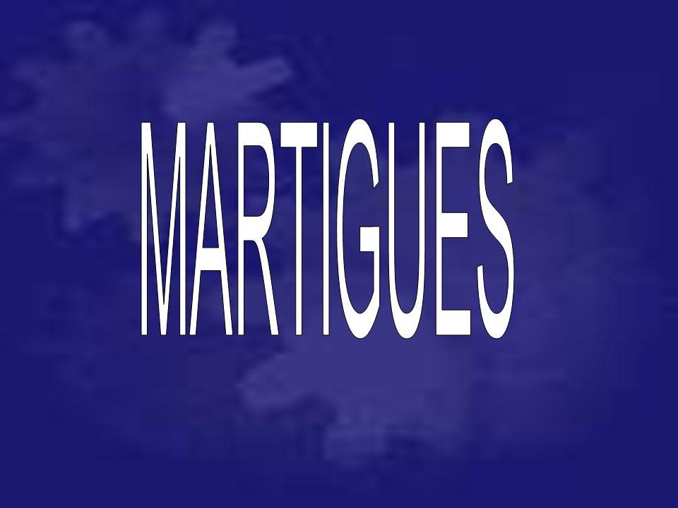 SMAP04 91 03 73 6004 91 03 66 382 traverse Fr è res 13016 Marseille ____________________________________________________ Societ é Maintenance Portuair