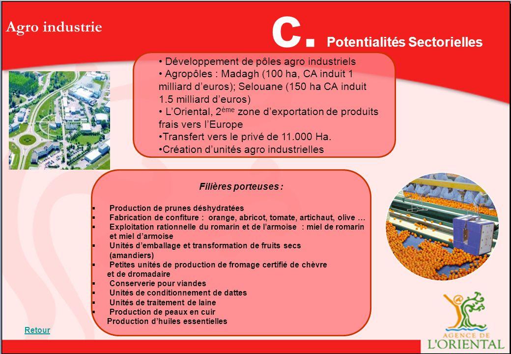 Agro industrie Développement de pôles agro industriels Agropôles : Madagh (100 ha, CA induit 1 milliard deuros); Selouane (150 ha CA induit 1.5 milliard deuros) LOriental, 2 ème zone dexportation de produits frais vers lEurope Transfert vers le privé de 11.000 Ha.