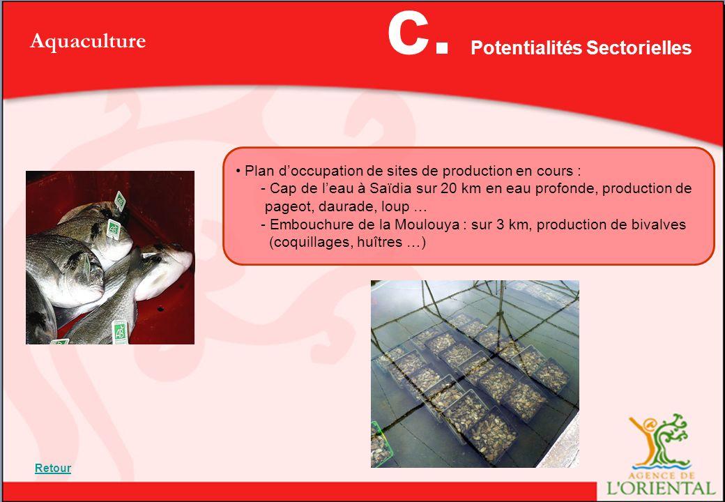 Aquaculture Plan doccupation de sites de production en cours : - Cap de leau à Saïdia sur 20 km en eau profonde, production de pageot, daurade, loup … - Embouchure de la Moulouya : sur 3 km, production de bivalves (coquillages, huîtres …) Potentialités Sectorielles c.