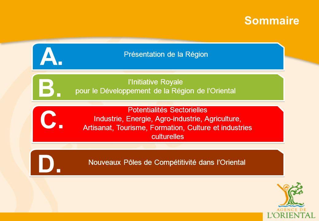 Présentation de la Région A.lInitiative Royale pour le Développement de la Région de lOriental B.