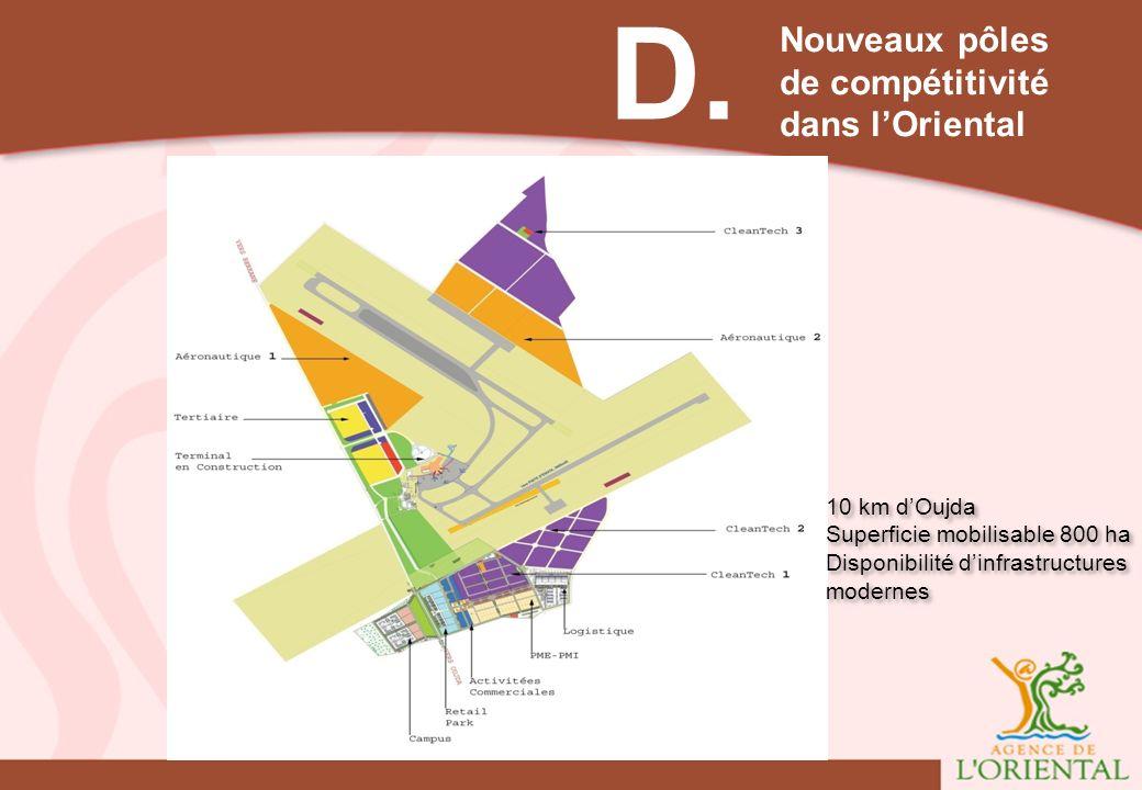 D. Nouveaux pôles de compétitivité dans lOriental 10 km dOujda Superficie mobilisable 800 ha Disponibilité dinfrastructures modernes 10 km dOujda Supe
