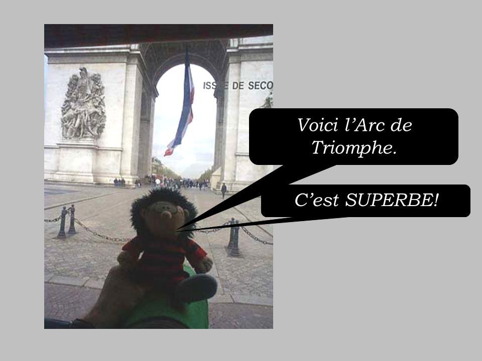 Voici la Tour Eiffel. Cest MAGNIFIQUE!.