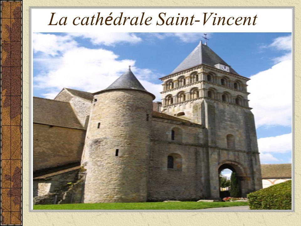 La cath é drale Saint-Vincent