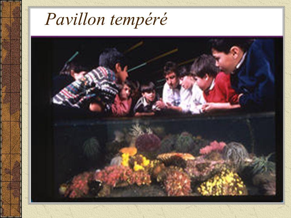 Pavillon tempéré