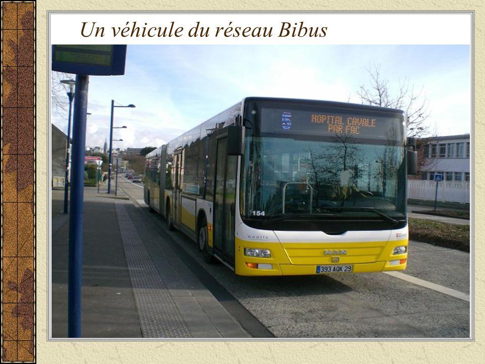 Un véhicule du réseau Bibus