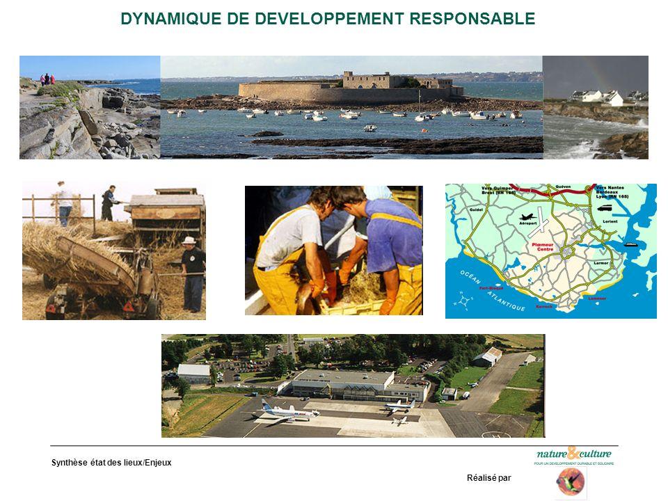 Synthèse état des lieux/Enjeux Réalisé par DYNAMIQUE DE DEVELOPPEMENT RESPONSABLE