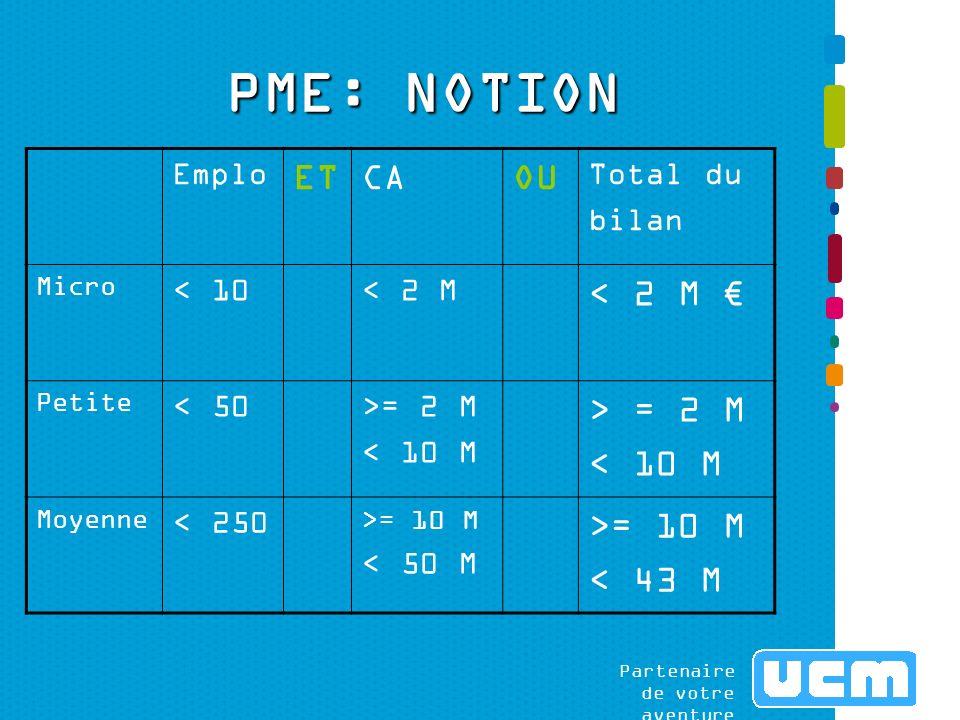 Partenaire de votre aventure PME: NOTION Emplo i ETCAOU Total du bilan Micro < 10< 2 M Petite < 50>= 2 M < 10 M > = 2 M < 10 M Moyenne < 250 >= 10 M < 50 M >= 10 M < 43 M