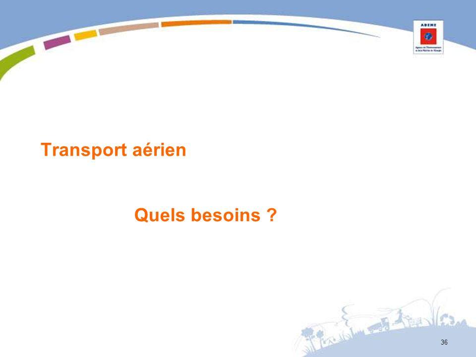 Transport aérien Quels besoins ? 36