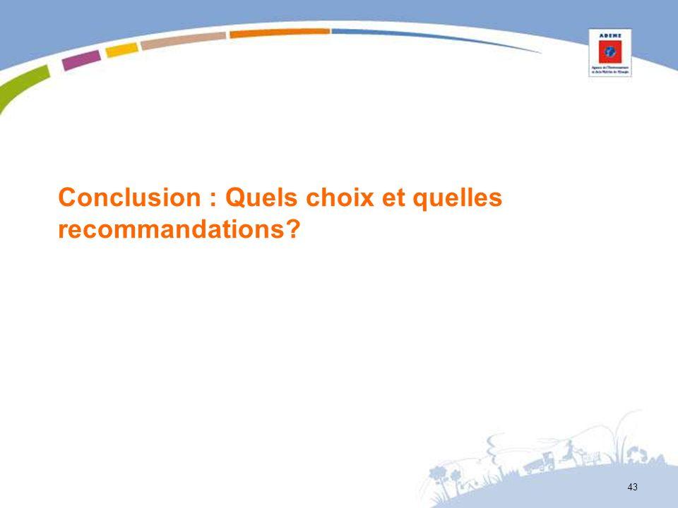 Conclusion : Quels choix et quelles recommandations? 43