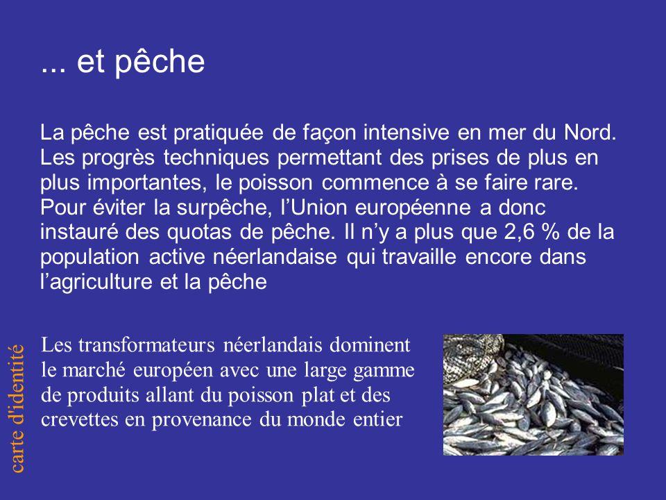 ... et pêche La pêche est pratiquée de façon intensive en mer du Nord.