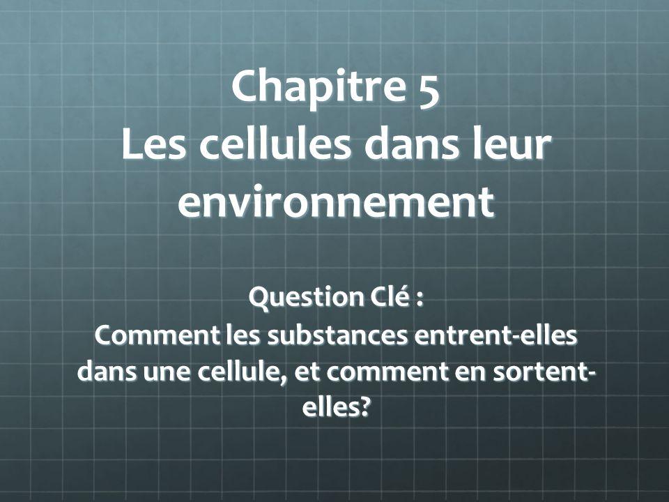 Chapitre 5 Les cellules dans leur environnement Question Clé : Comment les substances entrent-elles dans une cellule, et comment en sortent- elles?