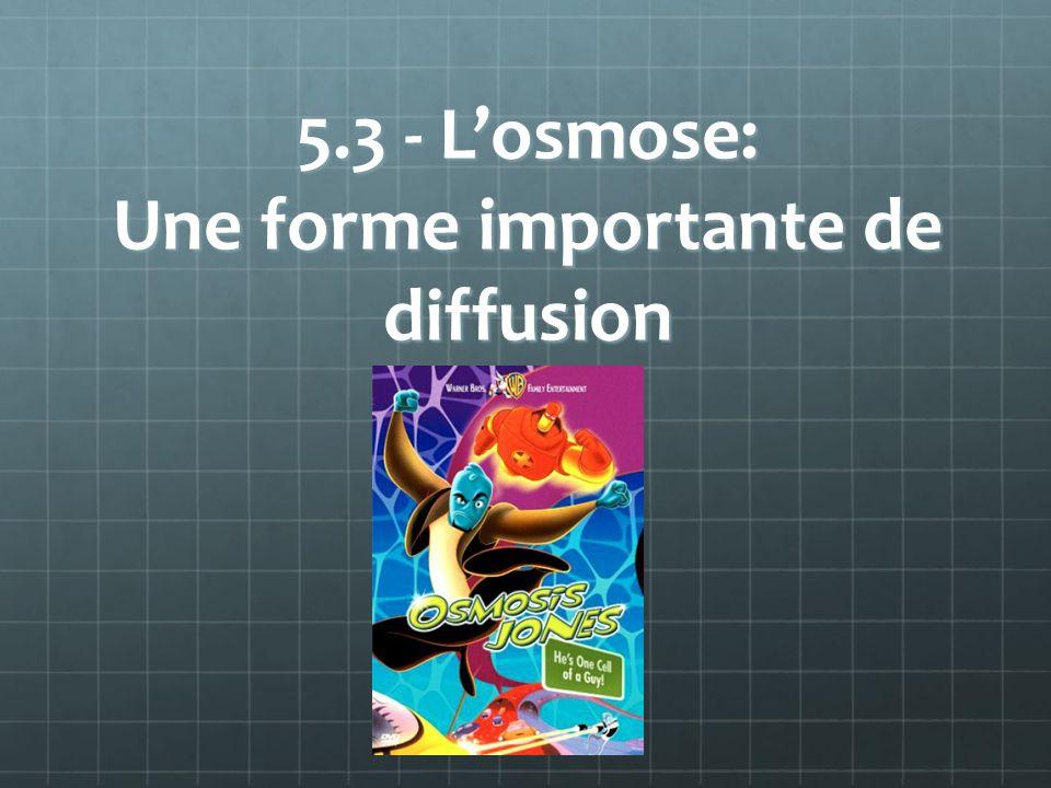 5.3 - Losmose: Une forme importante de diffusion