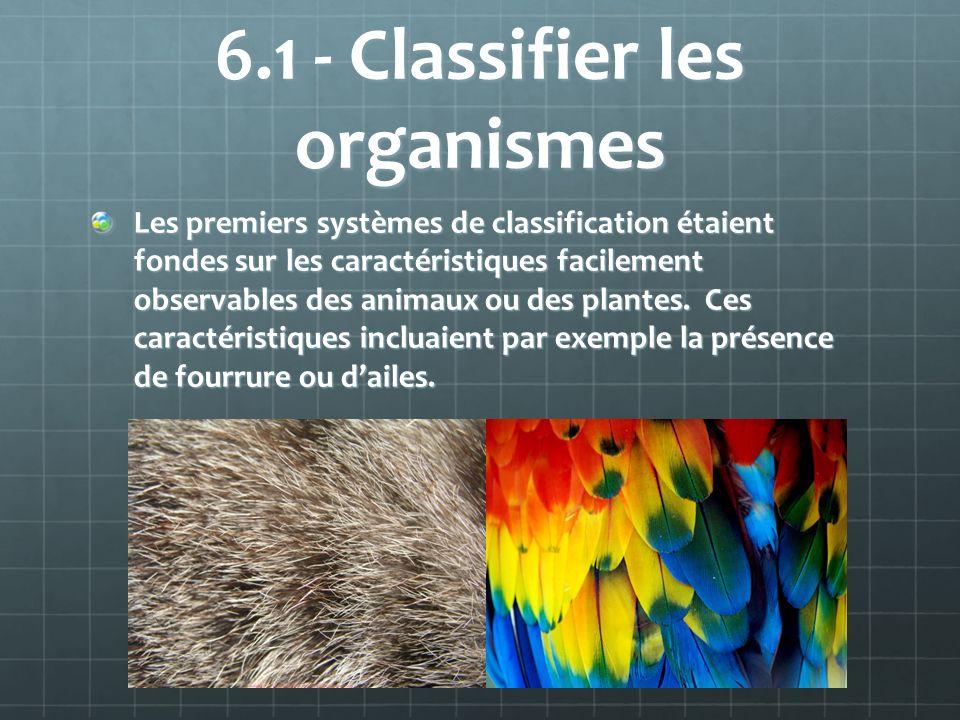 6.1 - Classifier les organismes Les premiers systèmes de classification étaient fondes sur les caractéristiques facilement observables des animaux ou des plantes.