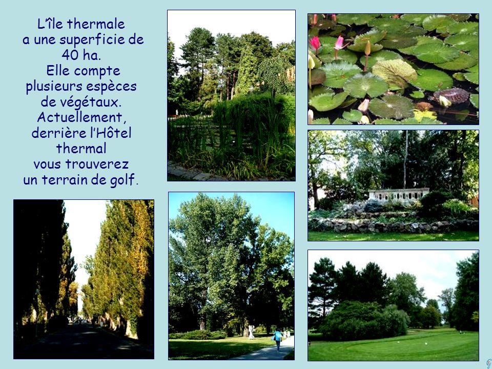 Lîle thermale a une superficie de 40 ha.Elle compte plusieurs espèces de végétaux.