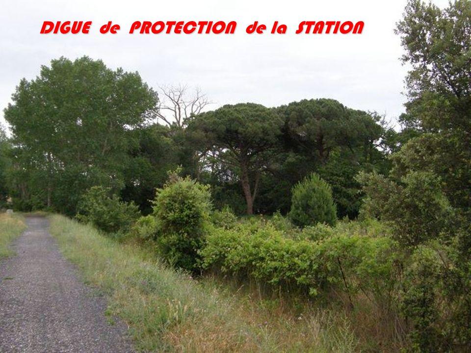 DIGUE de PROTECTION de la STATION