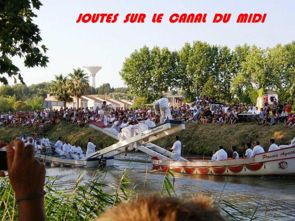 JOUTES SUR LE CANAL DU MIDI