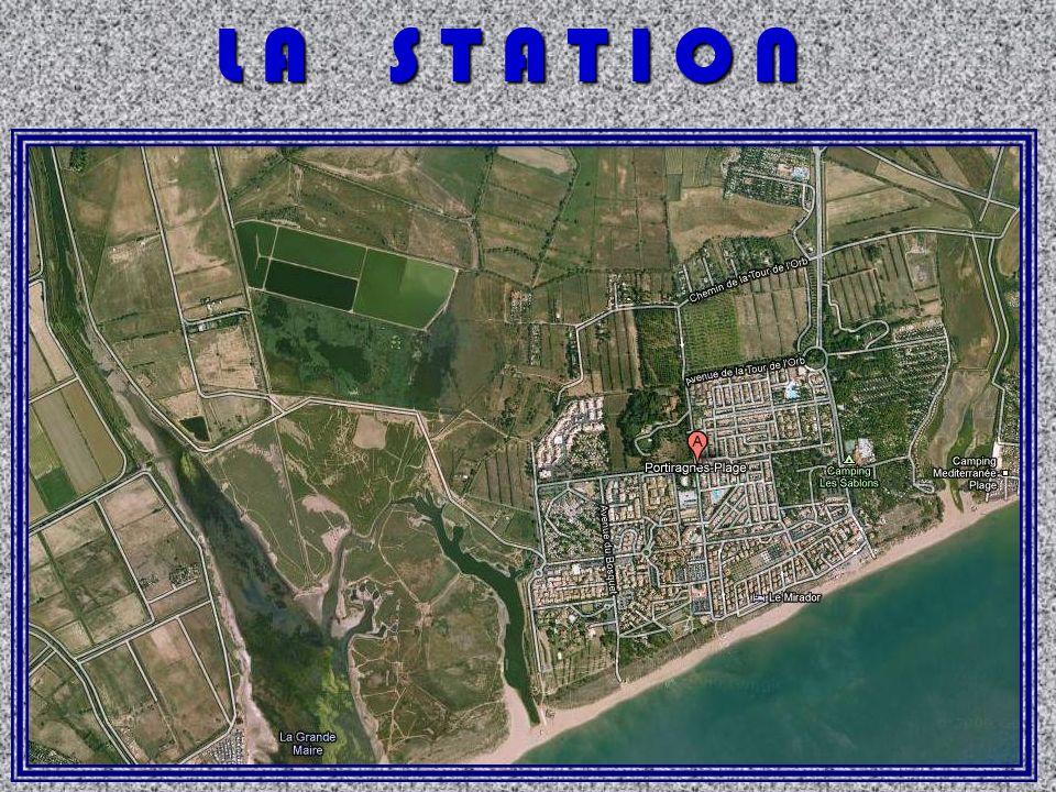 P r è s S a l é entre la station et le canal du midi