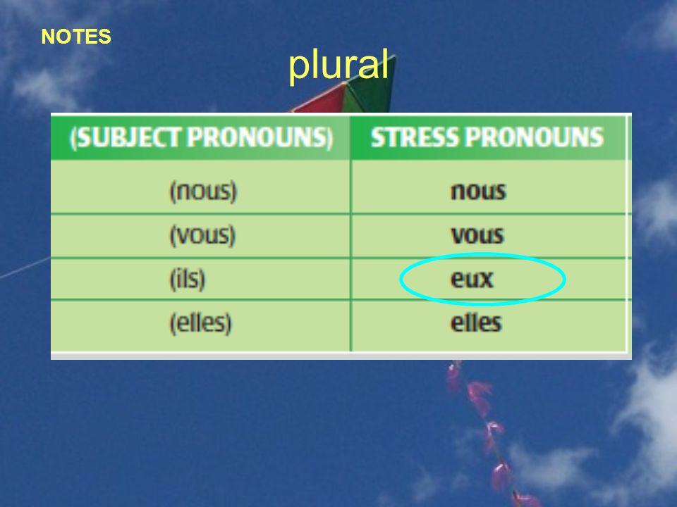 Uses of stress pronouns